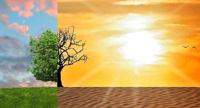 Si la temperatura supera los 1.5 ° C en el año 2030, la vida en el planeta será insostenible