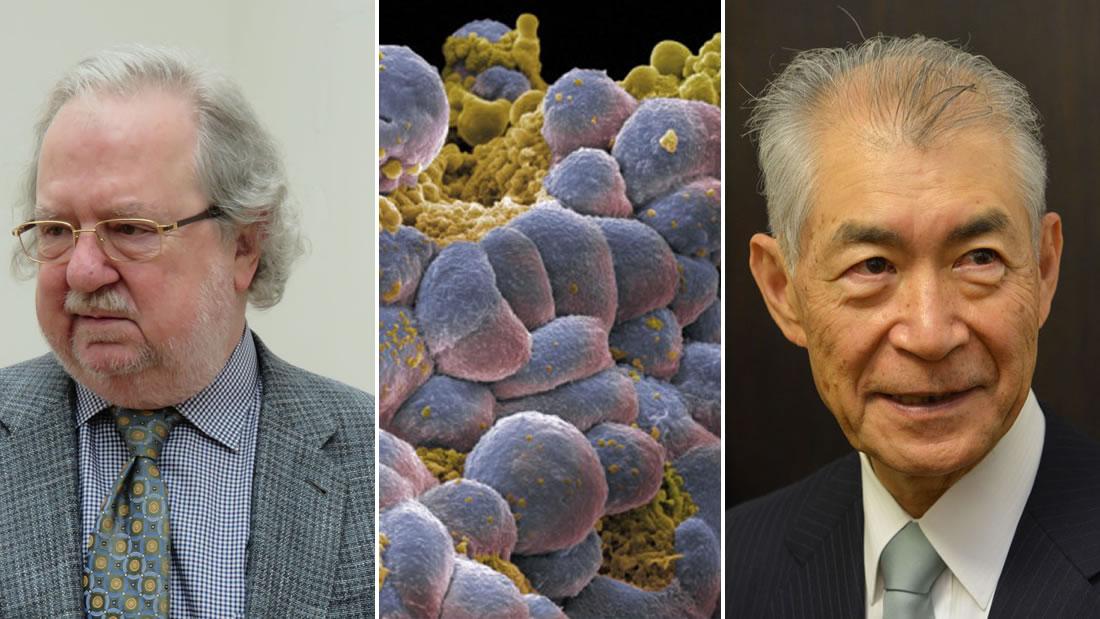 Entregan Premio Nobel de Medicina 2018 por innovador tratamiento contra el cáncer