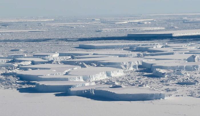 Grandes icebergs tabulares ubicados entre la plataforma de hielo Larsen C de la Antártida y la isla de hielo A-68, que se separó del Larsen C el año pasado, como se vio en una misión Operación IceBridge de la NASA el 16 de octubre de 2018