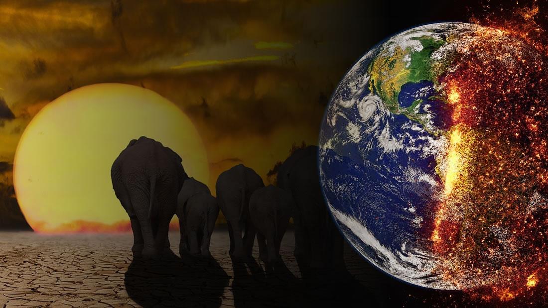 Solo quedan 12 años para prevenir una catástrofe climática global, advierten científicos