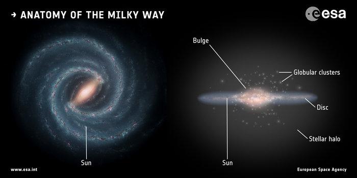 Anatomía de la Vía Láctea