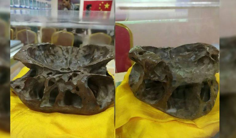 Investigador de OVNIs revela imagen de un supuesto «cráneo alienígena»