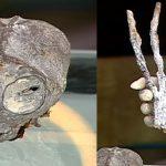 El fraude de las momias de Nazca y una ley que favorecería el delito contra el patrimonio cultural