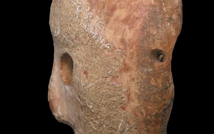 Vista lateral de una máscara de piedra de 9.000 años descubierta en la zona sur de Hebron Hills en Cisjordania