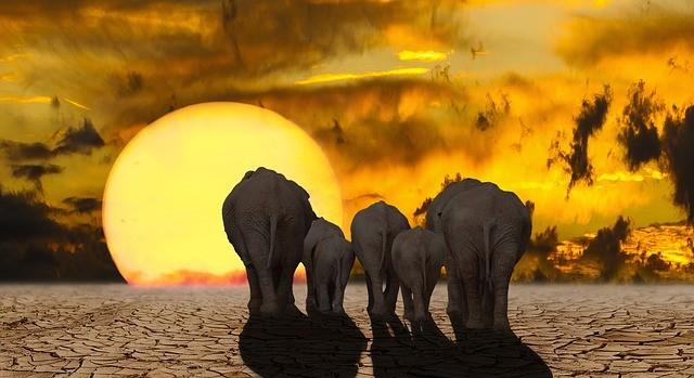 Un cambio en las temperaturas de 4 a 5 grados sería suficiente para acabar con toda la vida, ya que muchas especies dependen de otras, establece el estudio
