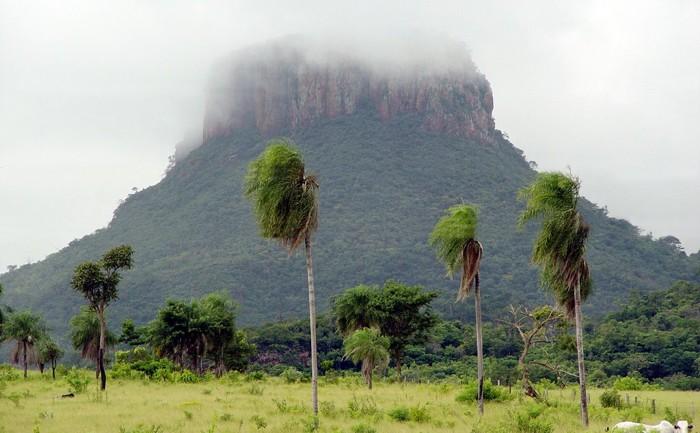 Cerro Guazu, forma parte de la cordillera del Amambay, en el territorio del Paraguay
