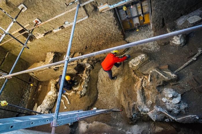 Restos de esqueletos de caballos en un antiguo establo en el sitio arqueológico de Pompeya, Italia