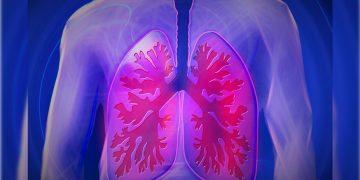 Científicos crean un «pulmón» que convierte agua en combustible