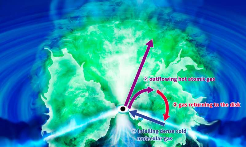 Impresión artística del movimiento de gas alrededor del agujero negro supermasivo en el centro de la Galaxia Circinus. Los tres componentes gaseosos forman la estructura de «rosquilla» teórica larga: (1) un disco de inflado de gas molecular frío denso, (2) gas atómico caliente que sale, y (3) gas que regresa al disco