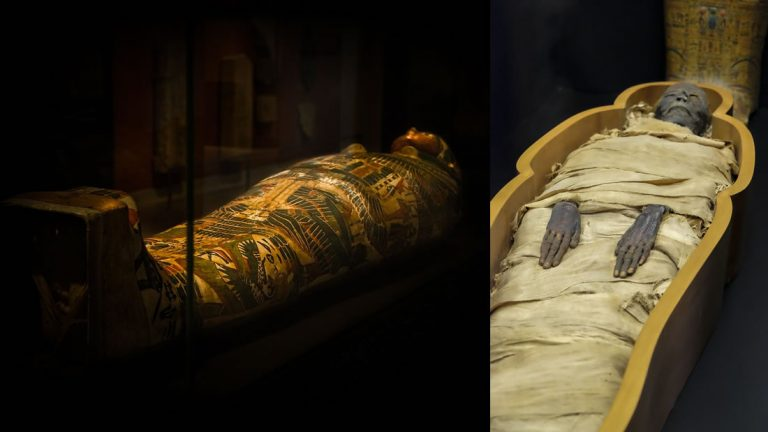 ¿Maldición egipcia? Seis arqueólogos mueren misteriosamente luego de abrir un sarcófago