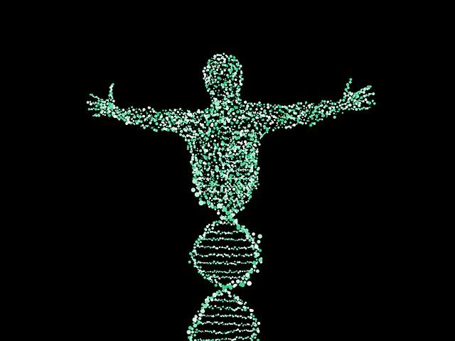 Científicos han propuesto modificar genéticamente a los humanos para volverlos más pequeños y así utilicen menos recursos naturales y contaminen menos