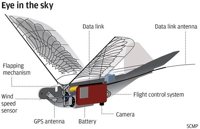 Diagrama del pájaro robot Dove y sus partes