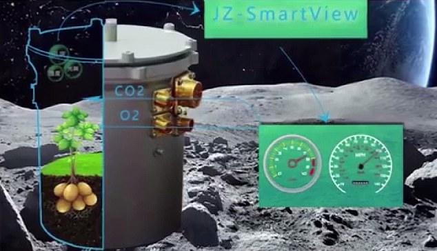 Los científicos esperan que las semillas crezcan en la Luna en 100 días y que los huevos de gusano de seda se incuben y se conviertan en polillas. Las semillas y los huevos se mantienen en una «mini biósfera lunar»