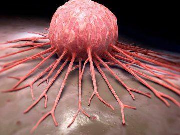 Revelan un nuevo mecanismo para «activar» el sistema inmunológico contra el cáncer