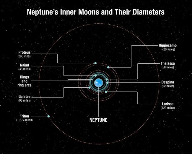Este diagrama muestra las posiciones de las lunas internas de Neptuno, así como sus diámetros