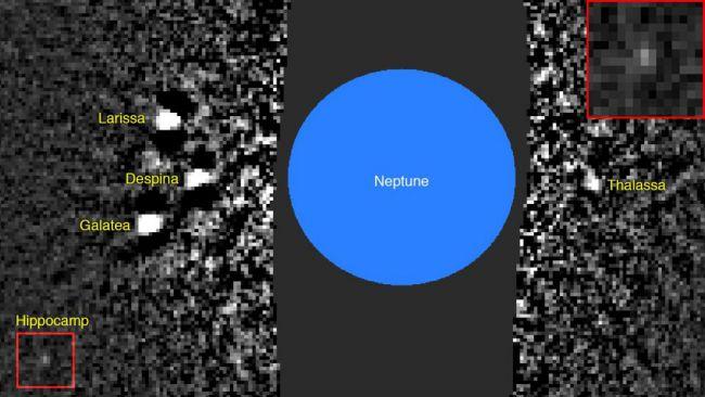 Esta es la imagen en la que se descubrió la pequeña luna de Neptuno, Hippocamp. Hippocamp es visible dentro del cuadro rojo; una versión ampliada se inserta en la parte superior derecha