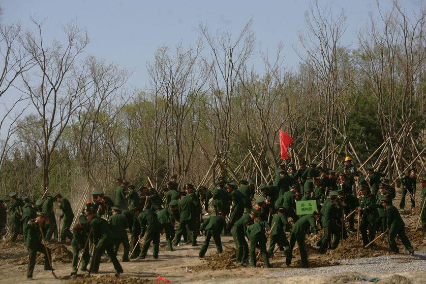 Soldados chinos han sido encargados de plantar árboles