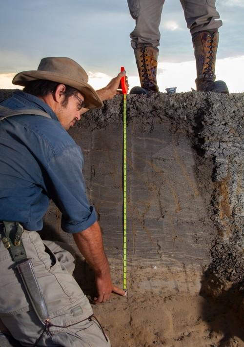 «Resuelve la cuestión de si los dinosaurios se extinguieron exactamente en ese nivel o si declinaron antes», dijo el paleontólogo Jan Smit. «Y esta es la primera vez que vemos víctimas directas»