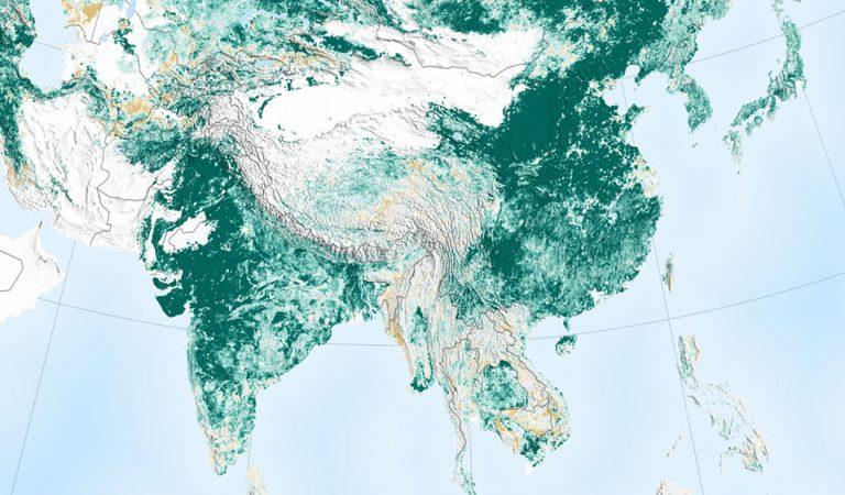 China e India han vuelto al mundo más verde que hace 20 años, dice un informe de NASA