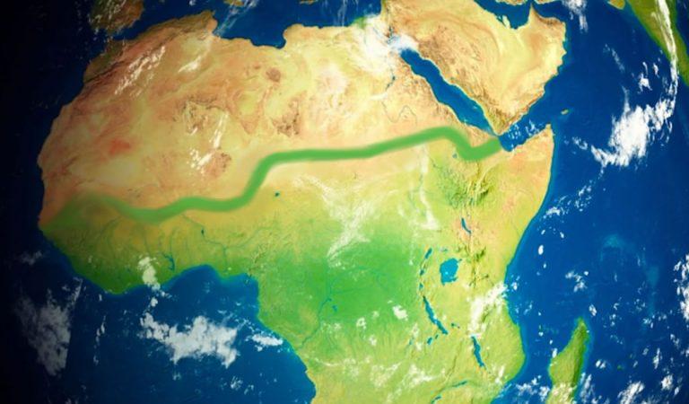 Docenas de países trabajan en plantar una muralla verde en África ¡y lo están logrando!