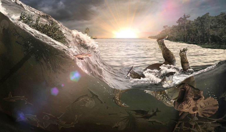 Hallan un cementerio de dinosaurios Triceratops, peces y mamíferos de hace 66 millones de años