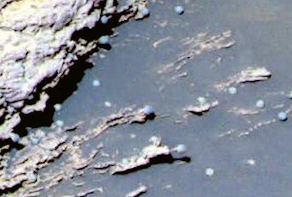 Vida en Marte: los especímenes capturados por el ojo izquierdo del Mars Rover Opportunity de la NASA se asemejan a hongos