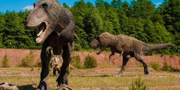Paleontólogos hallan al más grande Tiranosaurio Rex de todos los tiempos en Canadá