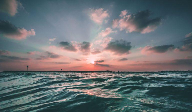 200.000 virus nunca antes vistos han aparecido en los océanos