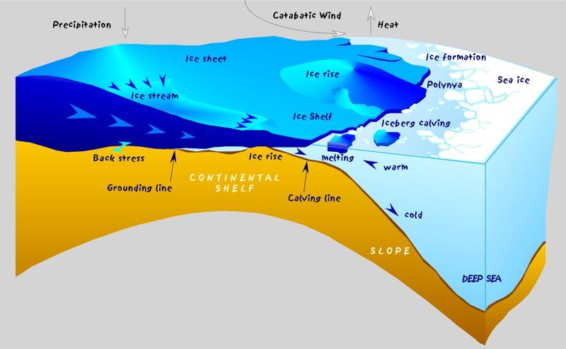 Diagrama de los procesos glaciares. Las polinyas costeras en la Antártida se producen por la acción de los vientos catabáticos