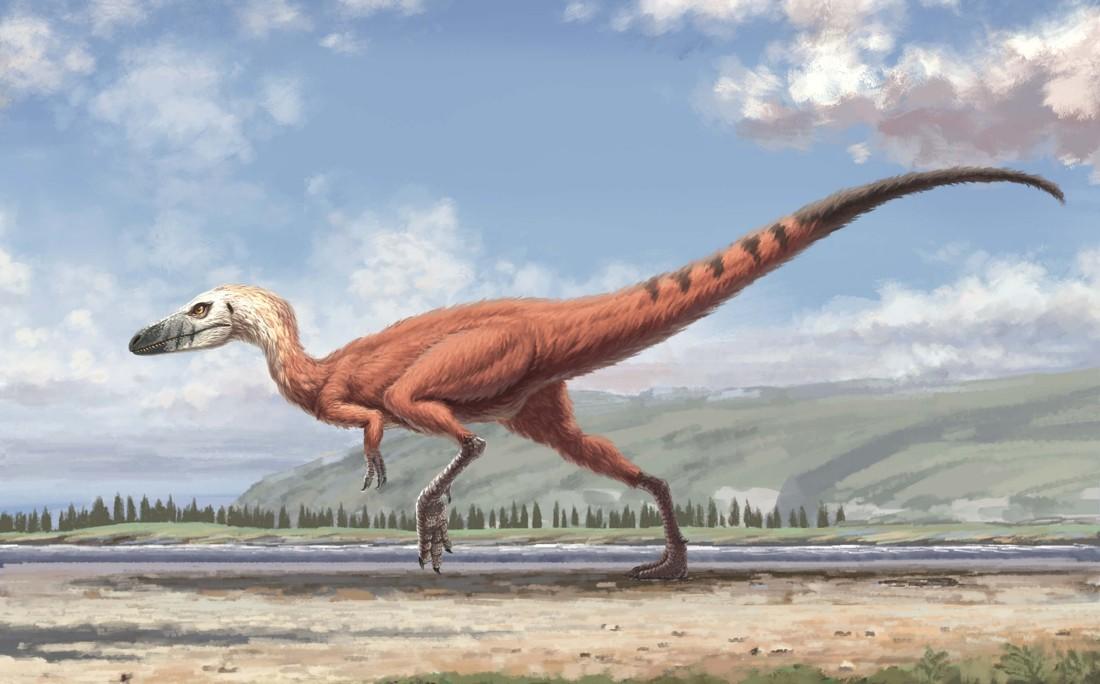 Representación artística del Minisauripus