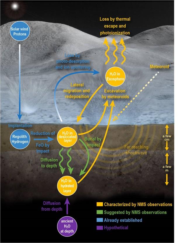 Esta infografía muestra el ciclo lunar del agua basado en las nuevas observaciones del Neutral Mass Spectrometer a bordo de la nave espacial LADEE