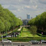 Bruselas plantará un árbol por cada bebé nacido