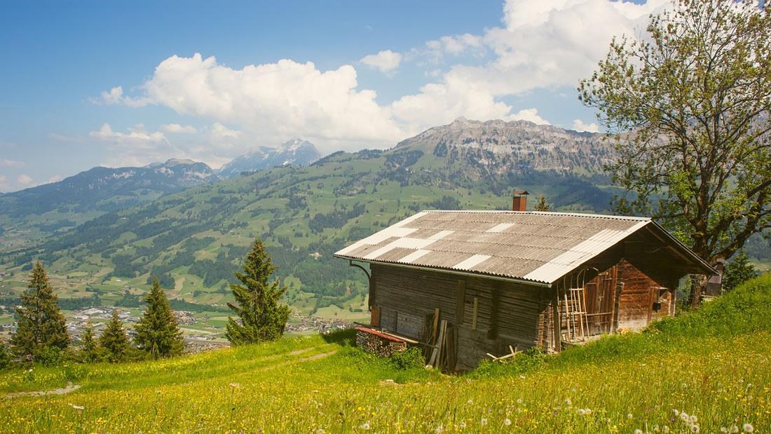 En Noruega: construyen cabañas en hospitales para sanar a pacientes con naturaleza