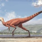 Hallan piel de dinosaurio fosilizada y perfectamente conservada en Corea