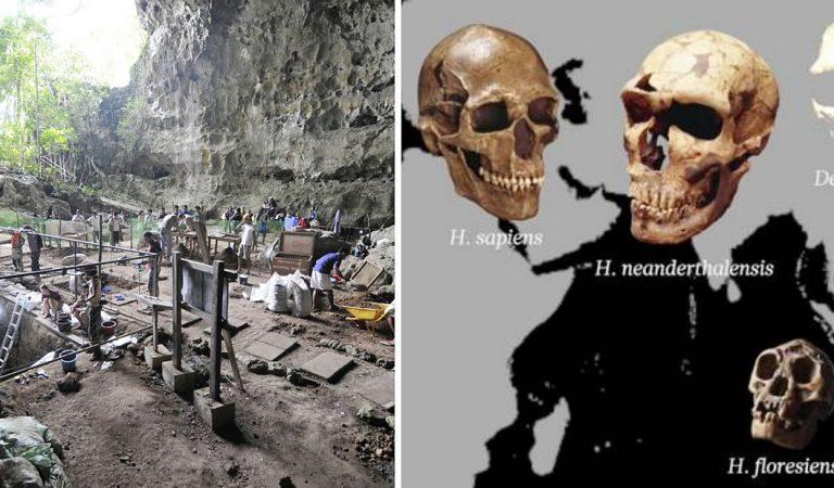 Hallan una nueva especie de humano «pequeño» en Filipinas