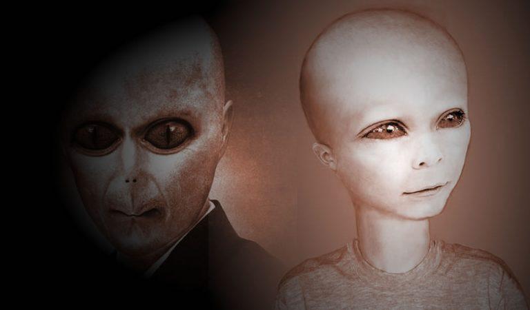 Híbridos humanos-alienígenas caminan entre nosotros y podrían ser la nueva especie dominante, afirma profesor de Oxford