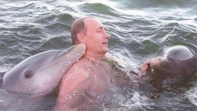 Informe militar ruso afirma que soldados aprendieron telepatía usando delfines