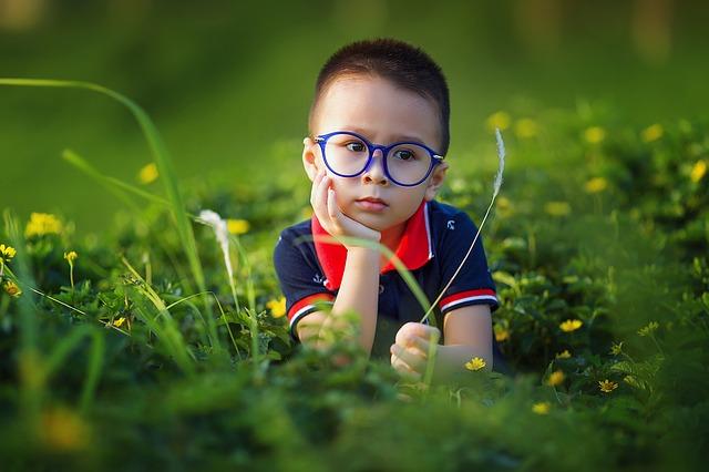 Las nuevas generaciones están decidiendo tener menos hijos lo que podría causar que las nuevas generaciones no sean tan inteligentes