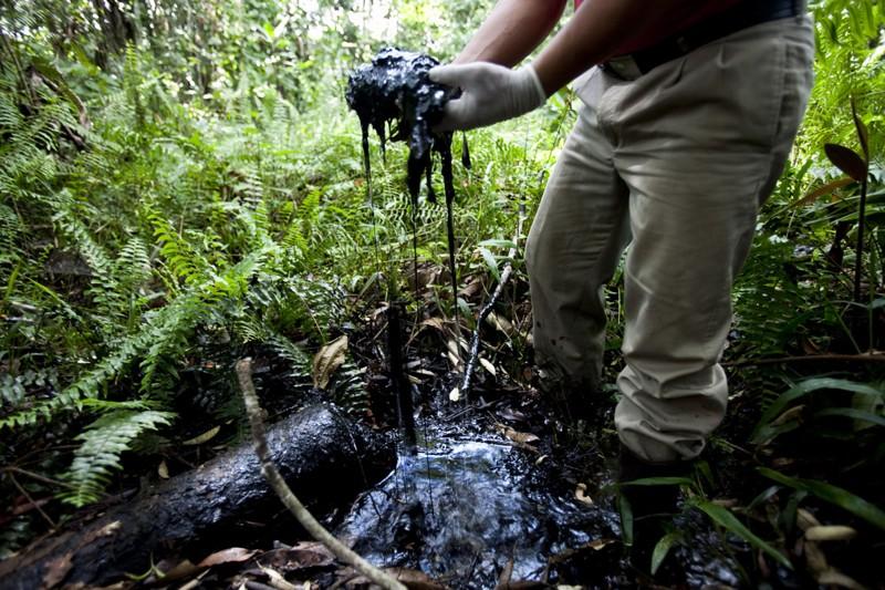 Lamentable escena que muestra el nivel de daño por el derrame de petróleo en la selva de Perú