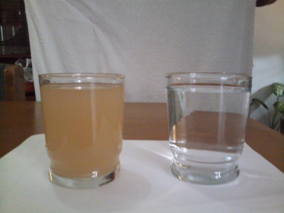 Purificación de agua usando cápsulas de nopal