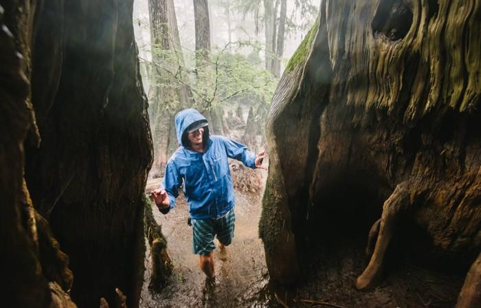 Zach West de NC Nature Conservancy examina un antiguo y hueco ciprés calvo en el pantano de Three Sisters en el río Black en el sureste de Carolina del Norte en esta foto de 2015