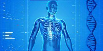 Descodificación biológica del cuerpo humano