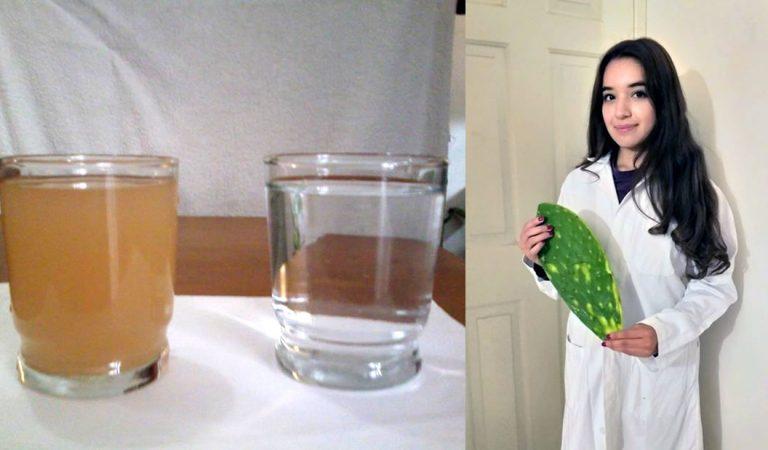 Estudiante universitaria de México logra purificar agua usando nopal