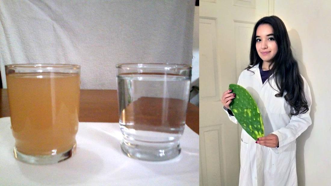 Estudiante universitaria de México lograr purificar agua usando nopal