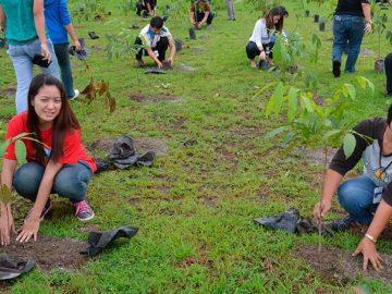 Filipinas obliga a los estudiantes a plantar 10 árboles si quieren graduarse