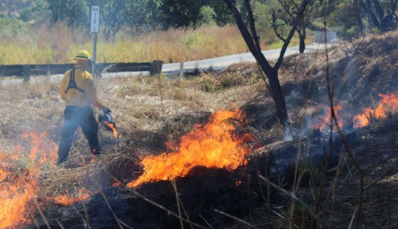 Un combatiente labora para apagar los incendios forestales