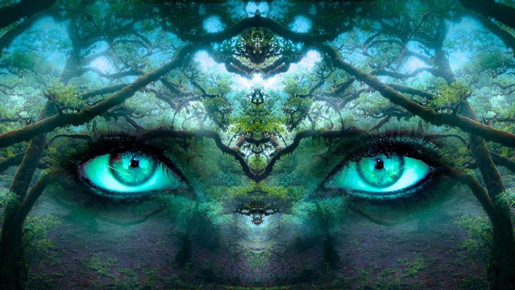 La consciencia puede existir en ausencia de la materia