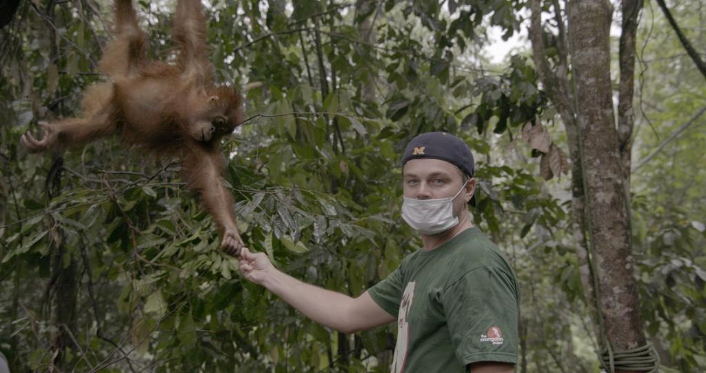 Leonardo DiCaprio, el gran actor y su faceta de luchador contra el cambio climático
