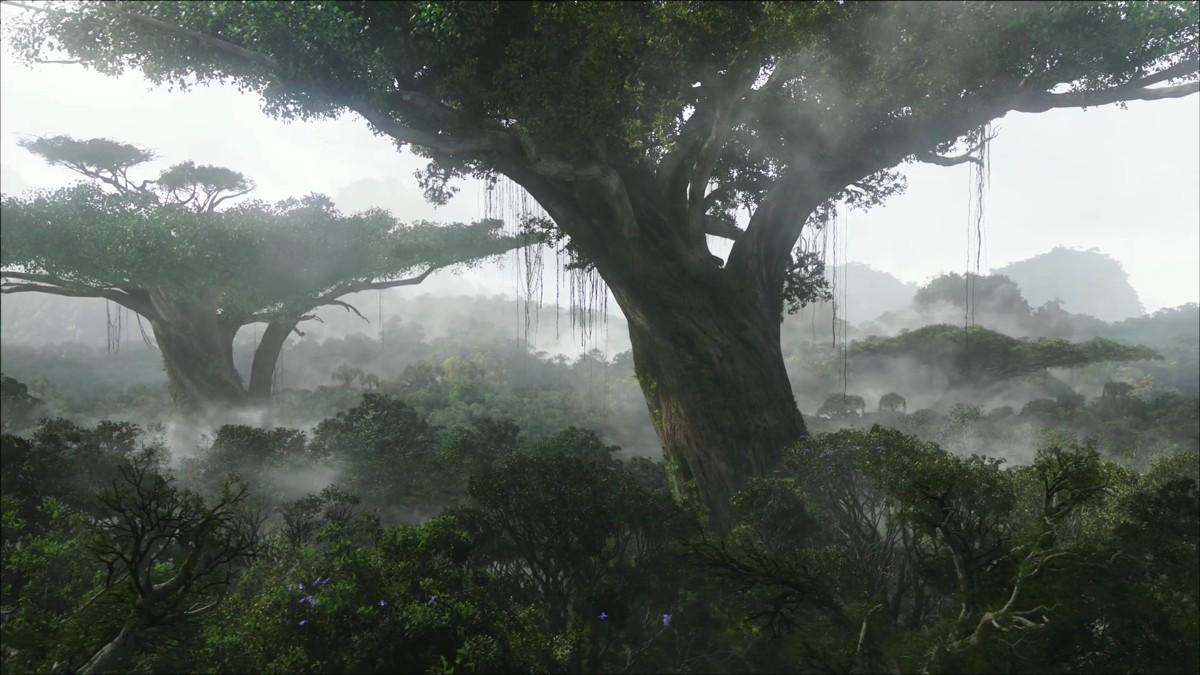 Como mostró la película de ciencia ficción «Avatar», en la ficticia luna Pandora, los árboles estaban interconectados por una gran red subterránea por la que intercambian información y a la que todos podían acceder