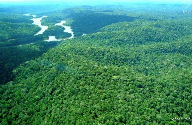 Una de las áreas protegidas que puede ser afectada por la depredación de RENCA